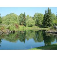 Peaceful landscape-blog